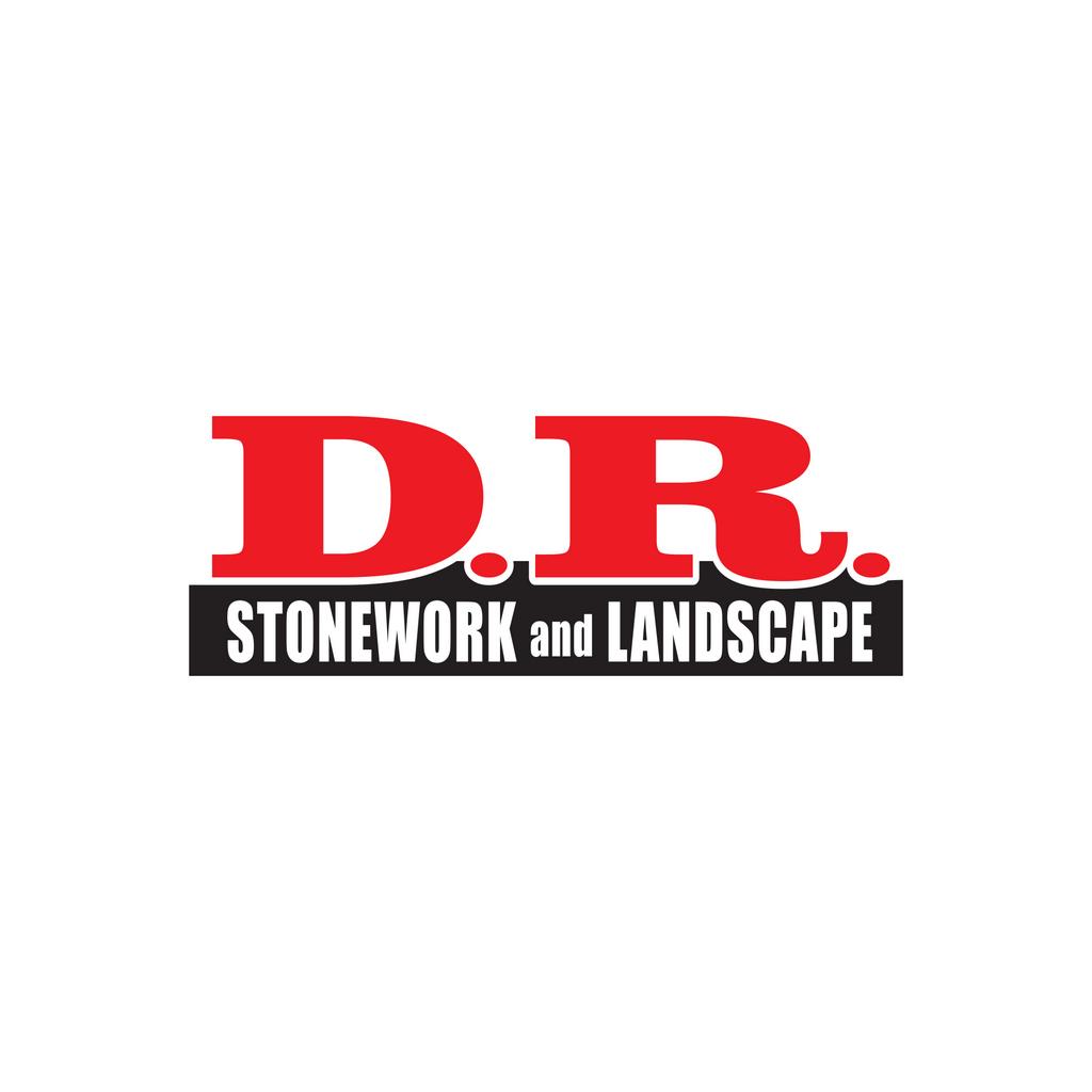 DRStone Logo2Color // Logo Design